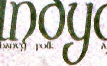 Indygo logo